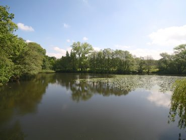 Image of the Lake at The Hold Hall in Alderley